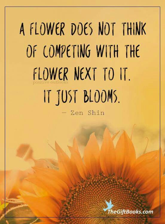 Just Bloom Quotes Pics Just Because Pinterest Sunflower