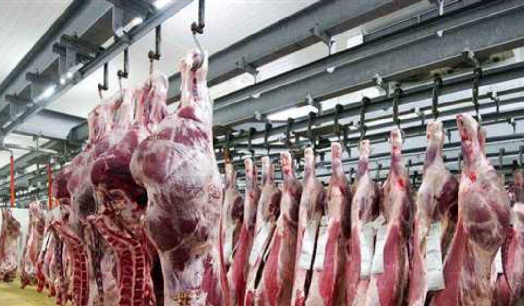 اللحم في بلجيكا هل هو حلال فعلا ام لا تطرح العديد من التساؤلات عن اللحوم الموجودة في الاسواق التي يقال انه