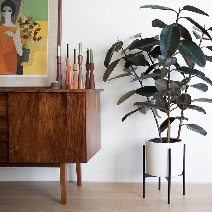 Case Study Planter White Modern Home Interior Design Modern