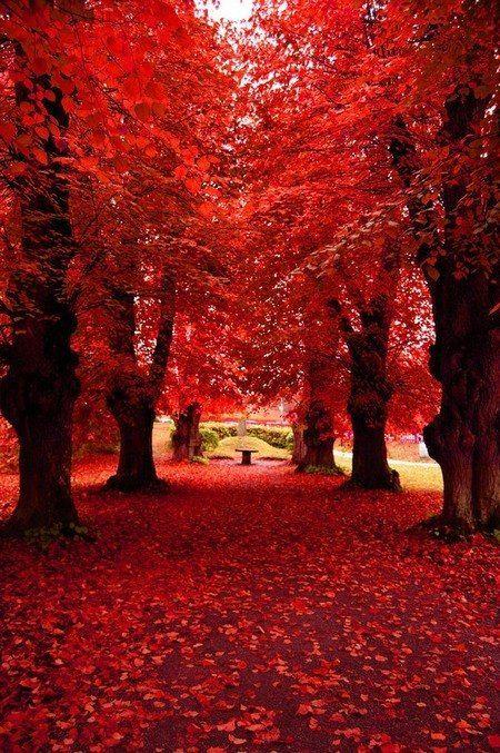 Vermelho também foi usado para a Mãe Natureza momentos