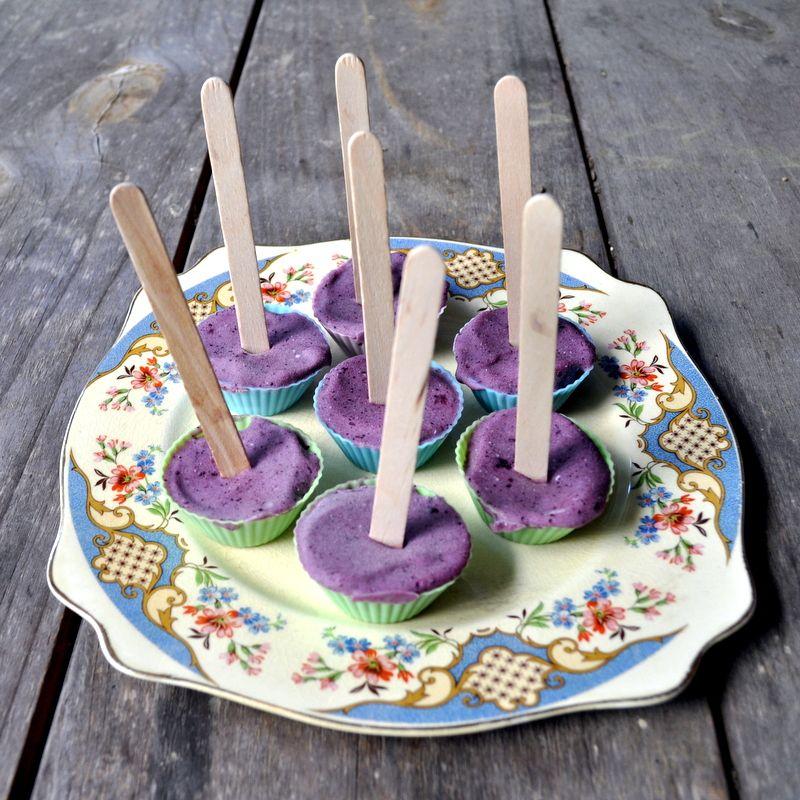 3 Ingredient Berry IceCream Pops {Paleo} {DairyFree