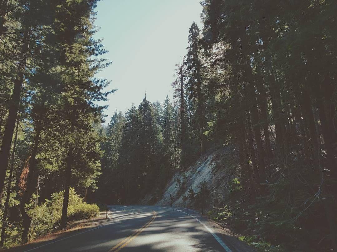 Just run away - into nature 🌲🌲🌲 #moodoftheday #feelinglike #runaway into #nature #ontheroad #yosemite #yosemitevalley #road #picoftheday #instamood #giuliaejonnyontheroad #americandays