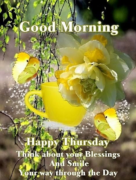 Good Morning Happy Thursday Daily Greetings Happy Thursday Adorable Happy Thursday Quotes