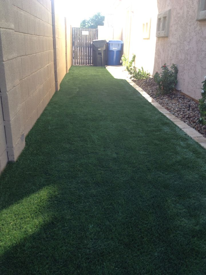 Backyard Dog Run Design