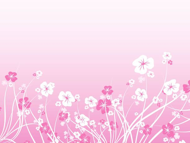 beautiful flower background wallpaper | hueputalo | Pinterest