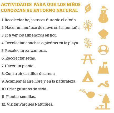 Actividades para que los niños conozcan su entorno natural