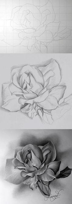 How to Draw a Rose  Dibujo Lpiz y Pinturas