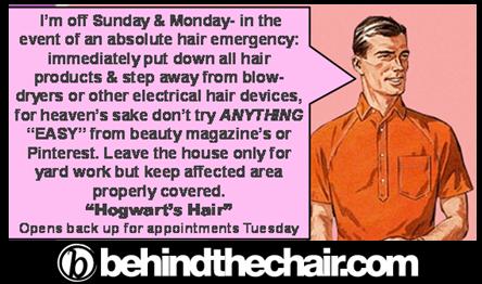 """Connie's"" brother Bruce the Stylist works at ""Hogwart's Hair"" a magic salon..."