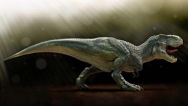 Dangerous Dinosaur Hd Images Amp Pictures For Desktop Wallpapers Free Download Large Amp Big Dinosaur Fight 1080 Dinosaur Wallpaper Dinosaur Fight Animals