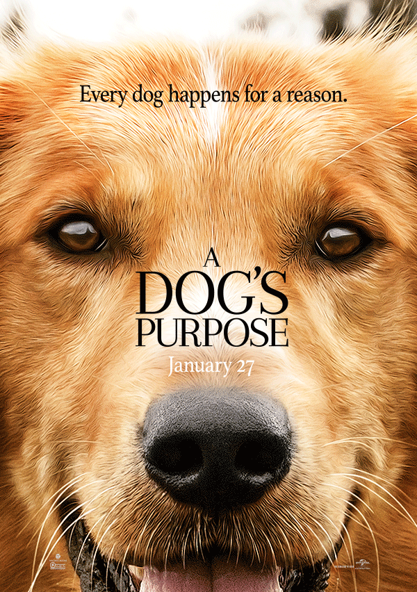 A Dog S Purpose Movie Trailer A Must See Movie For Dog Lovers A Dogs Purpose Movie Dog Movies A Dogs Purpose