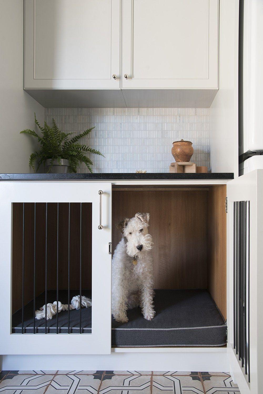 Real Life The Dog Towel Room For Tuesday Blog Dog Room Decor Dog Rooms Animal Room