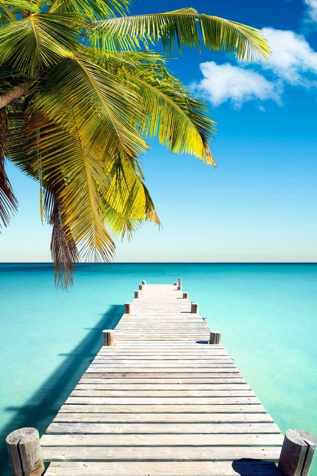 Paradise Dock Wallpaper. beach paradise summer iphone