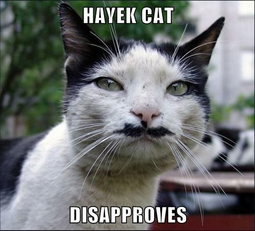 Hayek Kitty Iz Tract For The Timez Funny Cat Memes Kittens Funny Cat Memes