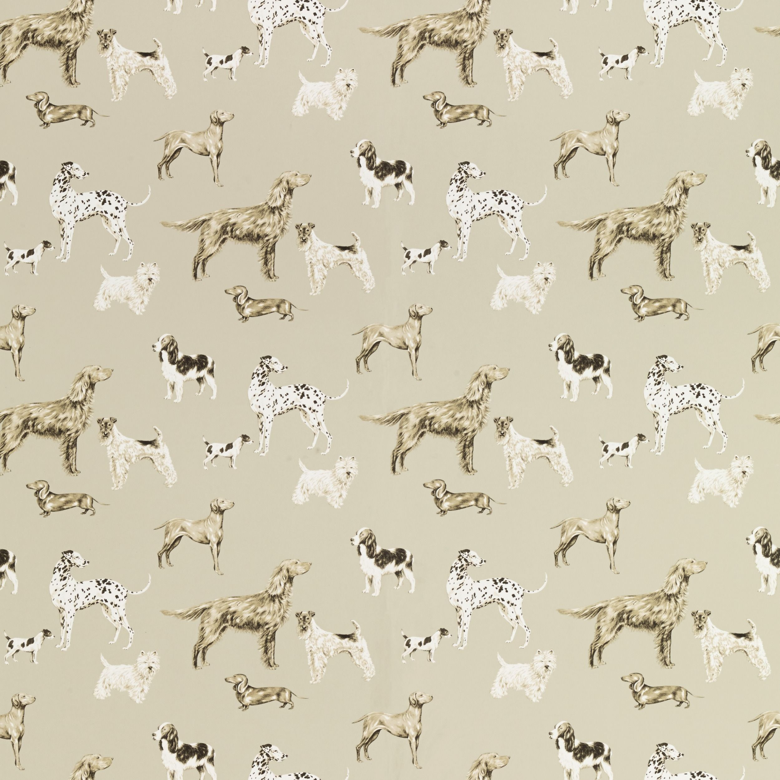 Dog Wallpaper For Walls lauraashleyss14 love this wallpaper for our hallway. a selection