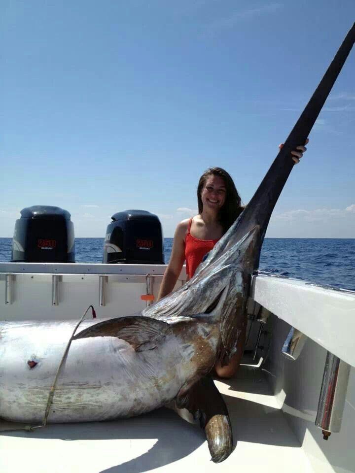 16+ Big game fishing line info