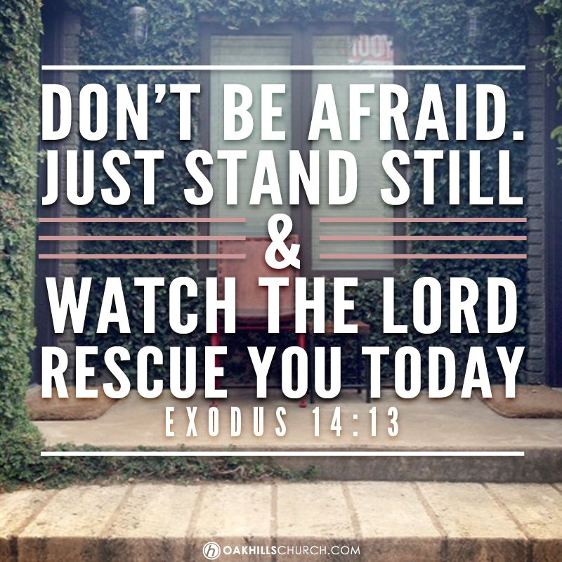Don't Be Afraid. Just Stand Still And Watch The Lord