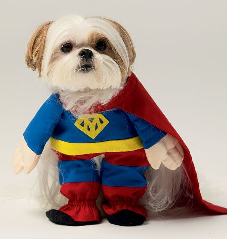 M6862 | Pet Clothes and Costume | Crafts/Dolls/Pets | McCall\'s ...