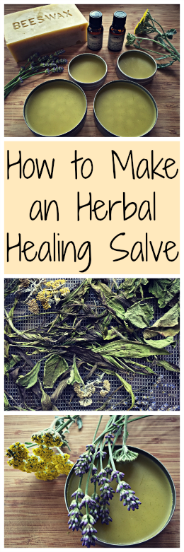 How to Make an Herbal Salve~ With healing herbs you can find in your yard! www.growforagecoo...