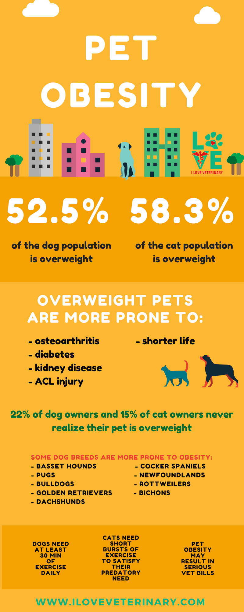 Obesity In Pets Is A Very Serious Matter This Is An Informative
