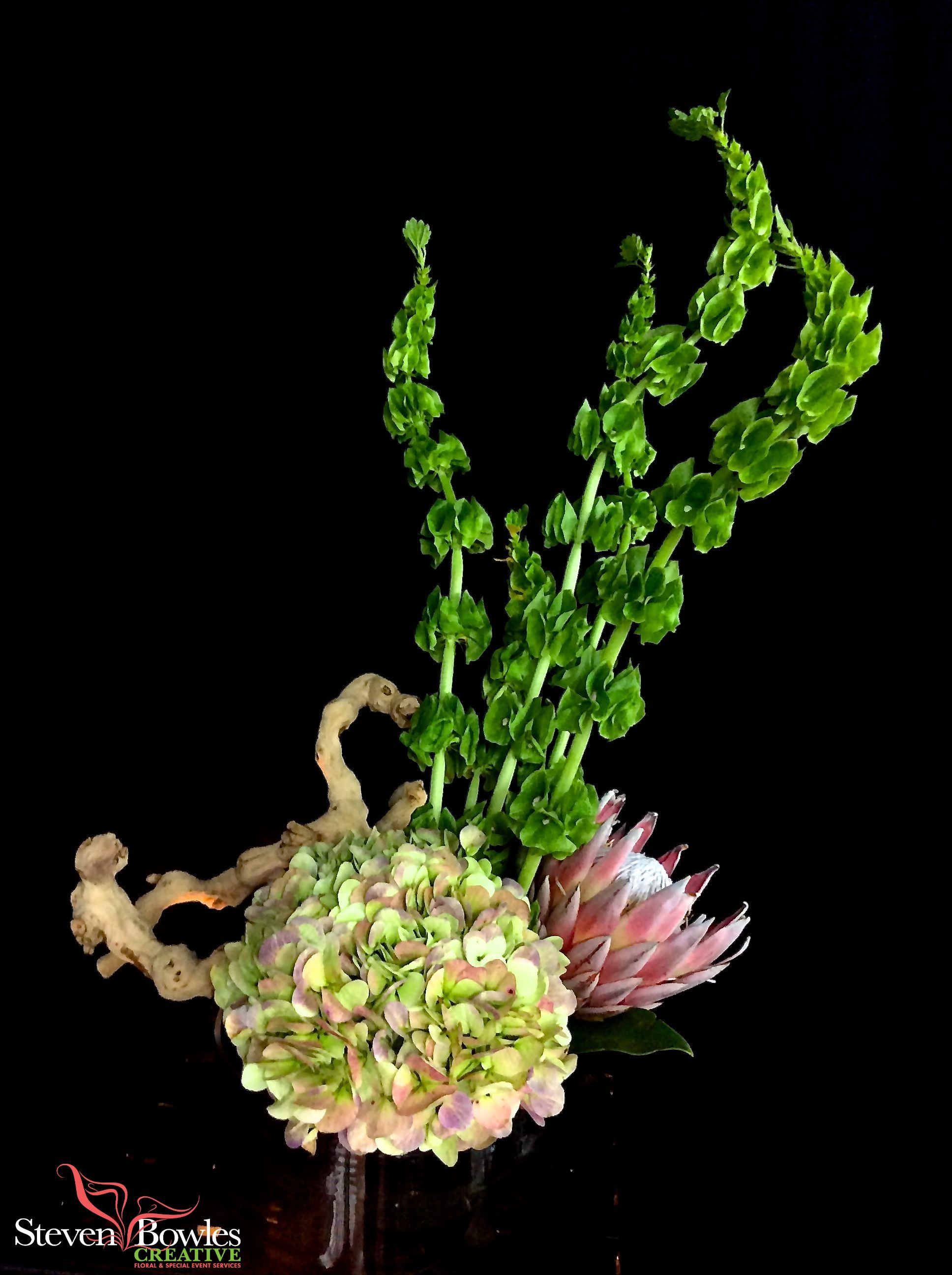 Modern flower arrangement of antique hydrangea, king protea, and bells of ireland. Designed by Steven Bowles Creative, Naples, FL floral and event designer. www.stevenbowlescreative.com