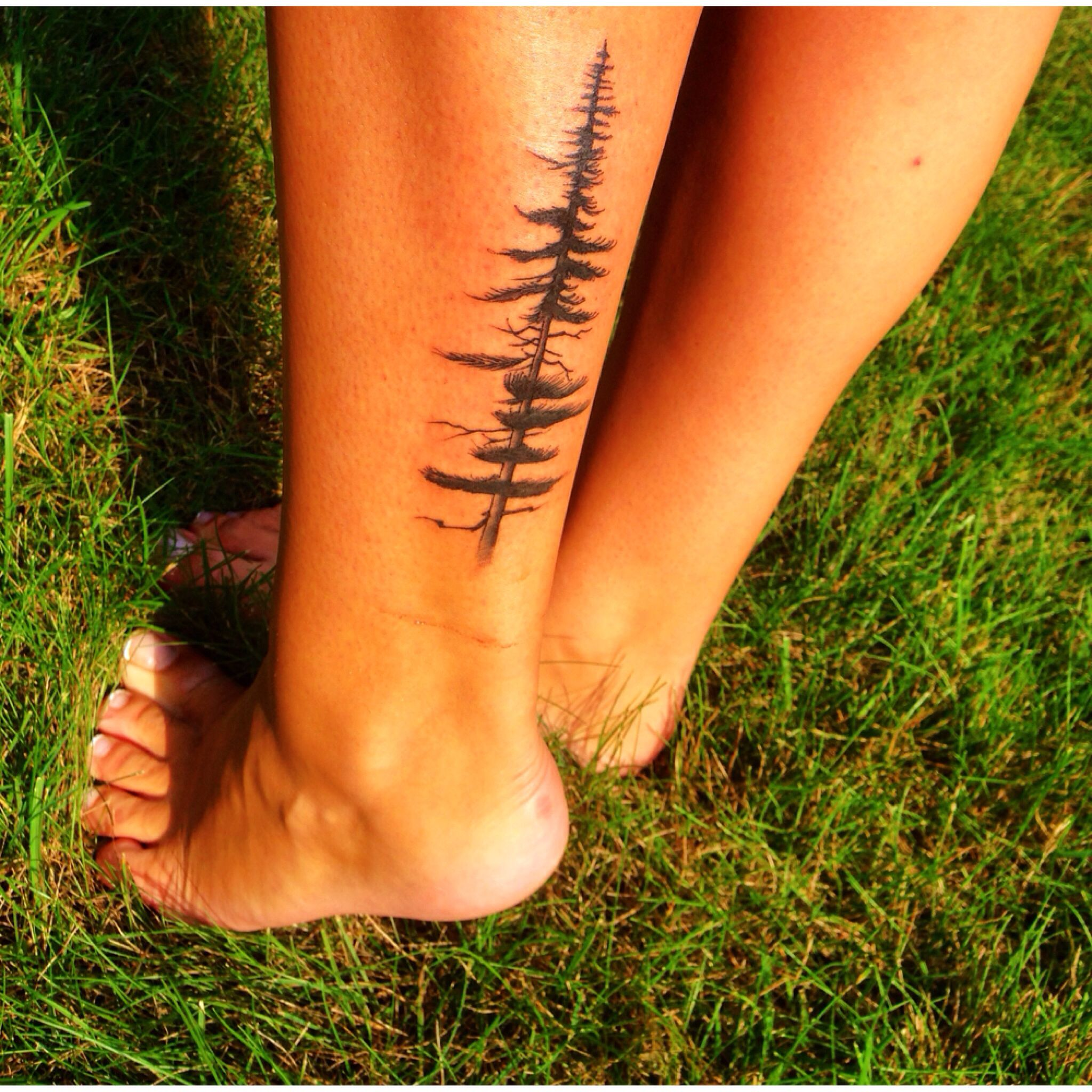 My most recent addition; Pine tree tattoo. For the love of