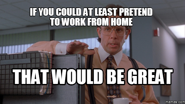 Funny Memes For Friday The Th : If you could at least pretend to work from home th why so