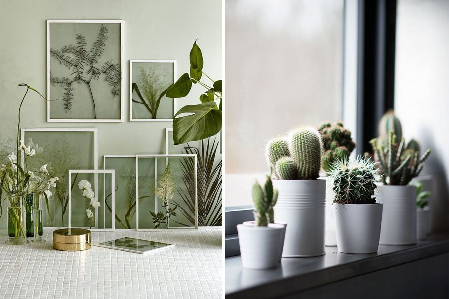 Trend groen in huis daily cappuccino lifestyle