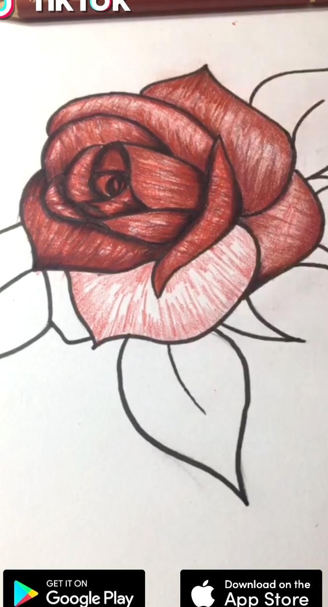 Roses For Valentine Download Tiktok To Find More Funny Ideas Lifes Moving Fast So Make Every Second Count Draw In 2020 Beauty Drawings Pencil Drawings Roses Drawing