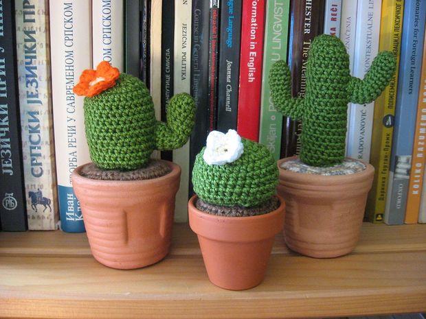 Amigurumi Cactus Crochet Pattern : Picture of cactus family haken pinterest cacti amigurumi and
