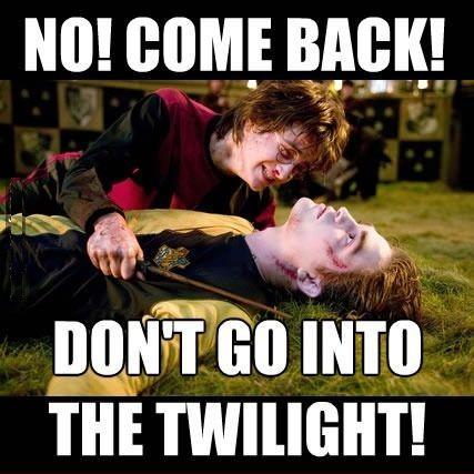 15 Harry Potter Memes Only True Potterheads Will Understand Harry Potter Twilight Harry Potter Jokes Harry Potter Vs Twilight