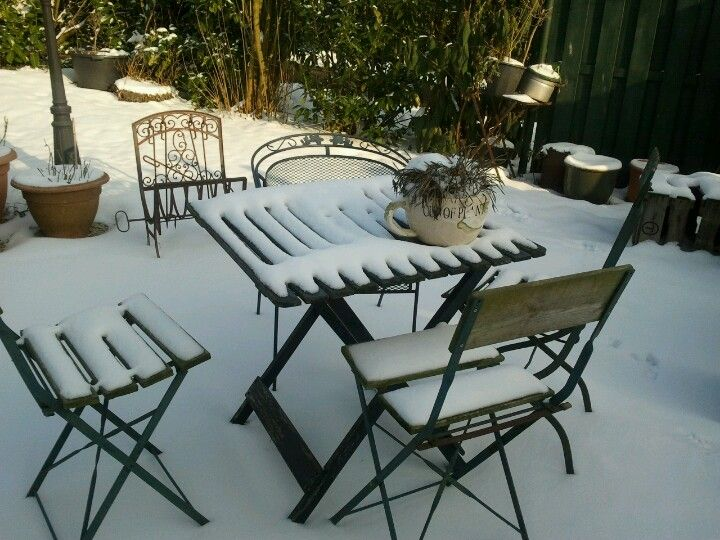 sneeuw in de theetuin aan de Limes# maurik 22 01 2013
