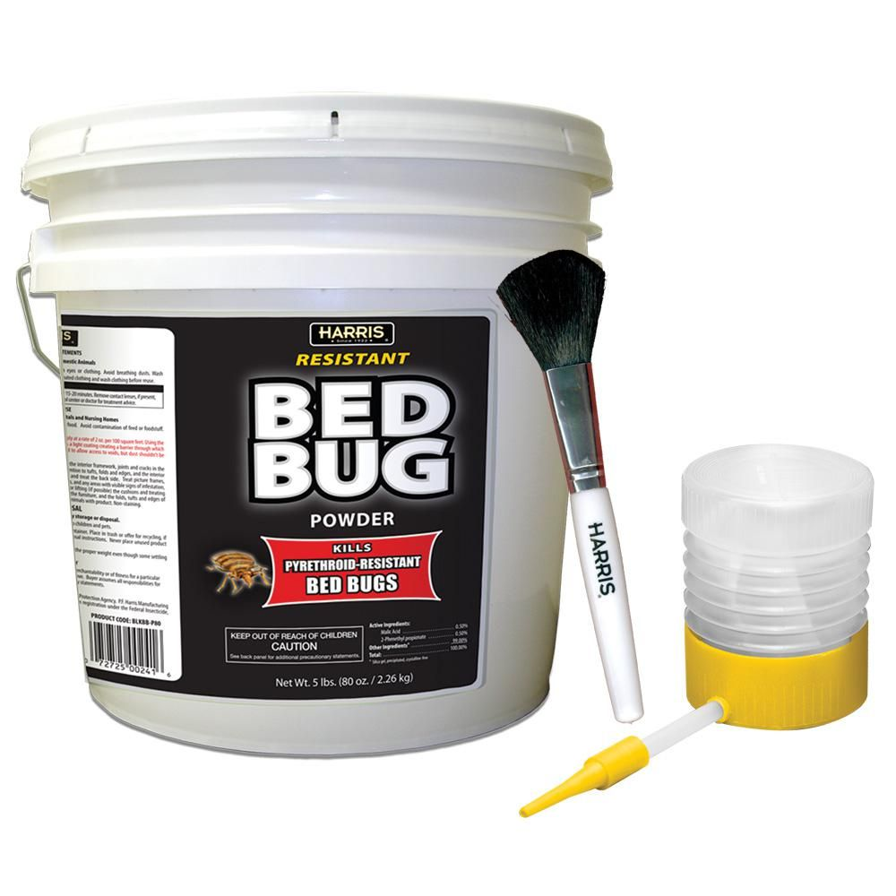Harris 80 Oz Resistant Bed Bug Powder With Applicator Brush Bed