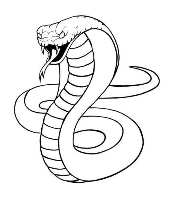 King Cobra Coloring And Activity Pages Seni Gambar Bentuk