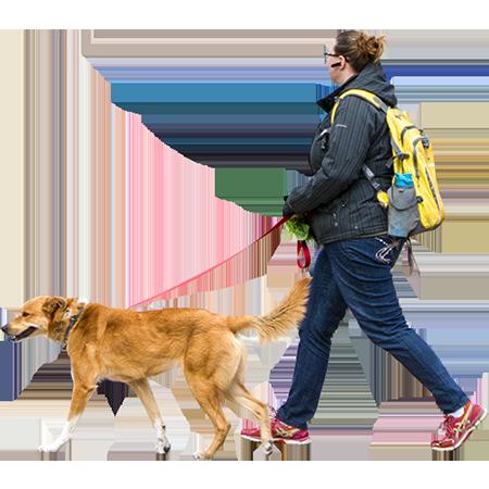 Woman Walking Dog Windy Day People Png Dog Walking Render People