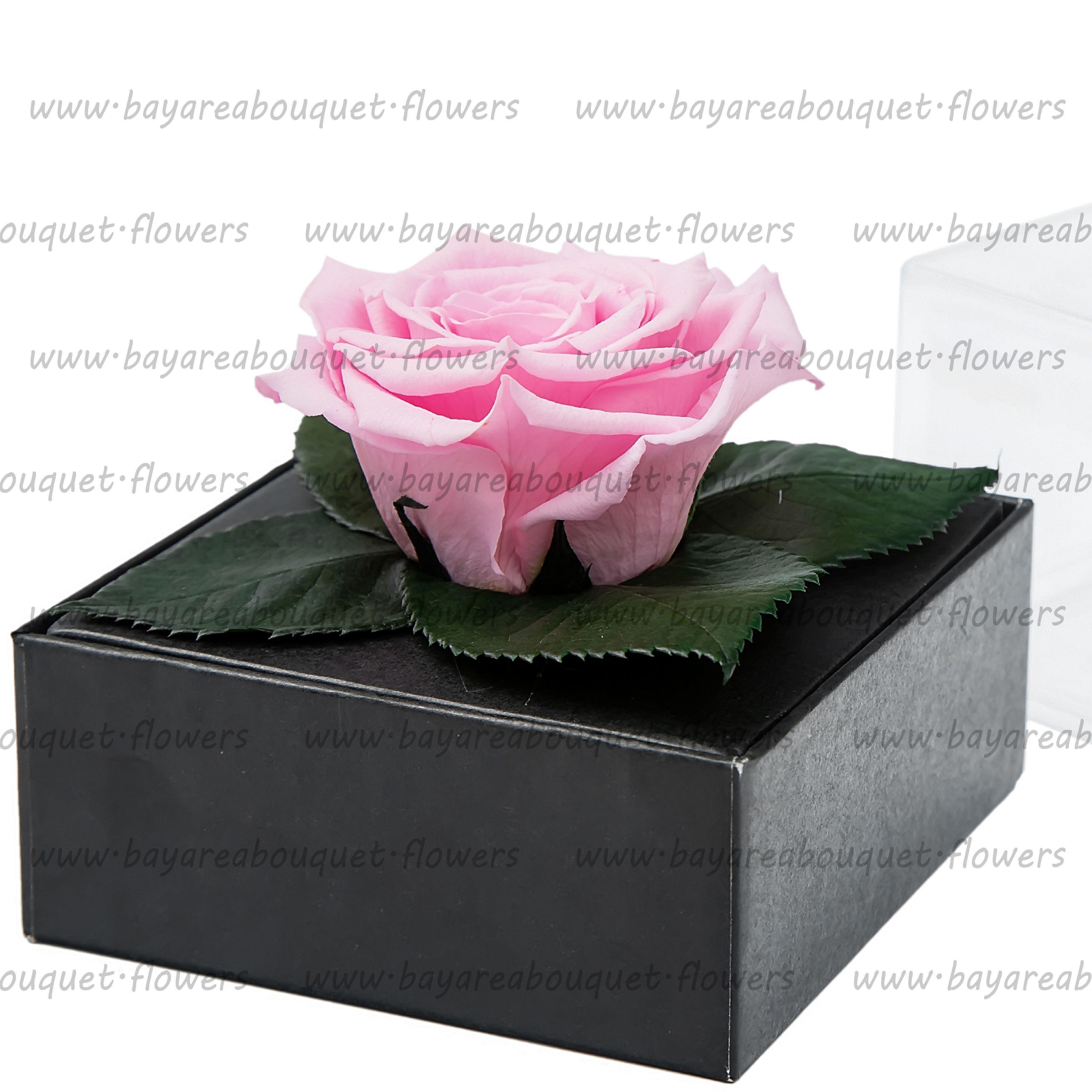 PRESERVED ROSE GIFT BOX BLUSH PINK