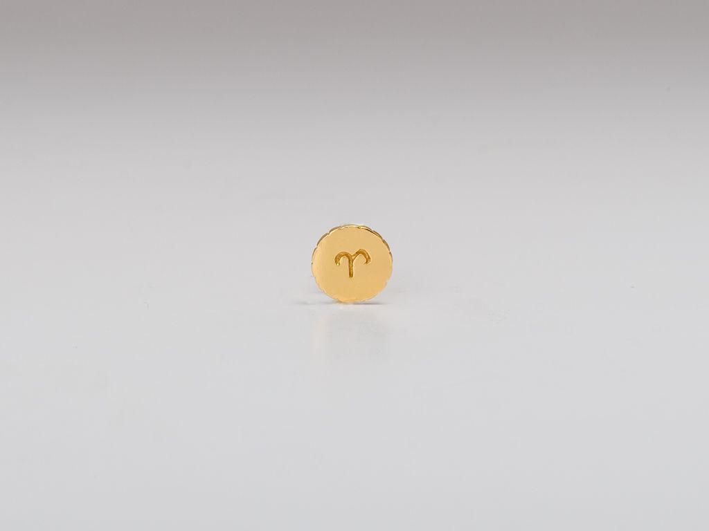 Astrology stud earrings. sweet bday gift.
