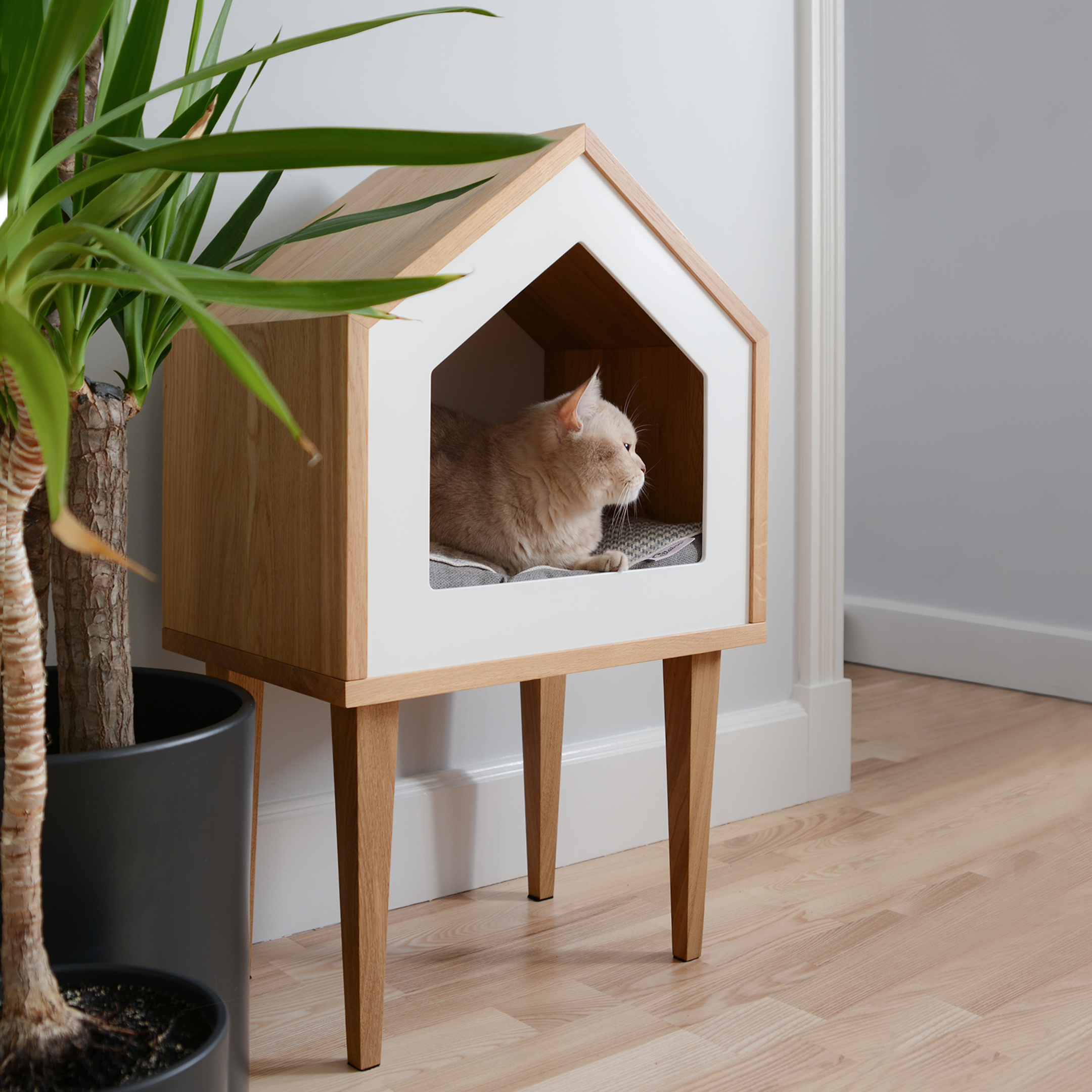Premium Cat House Cat House Oak Wood Cat House Cat Tree Pet Cot Cat Bed Pet Bed Indoor Cat House Pet Furniture Design Cat House Diy Cat Houses Indoor Cat Room