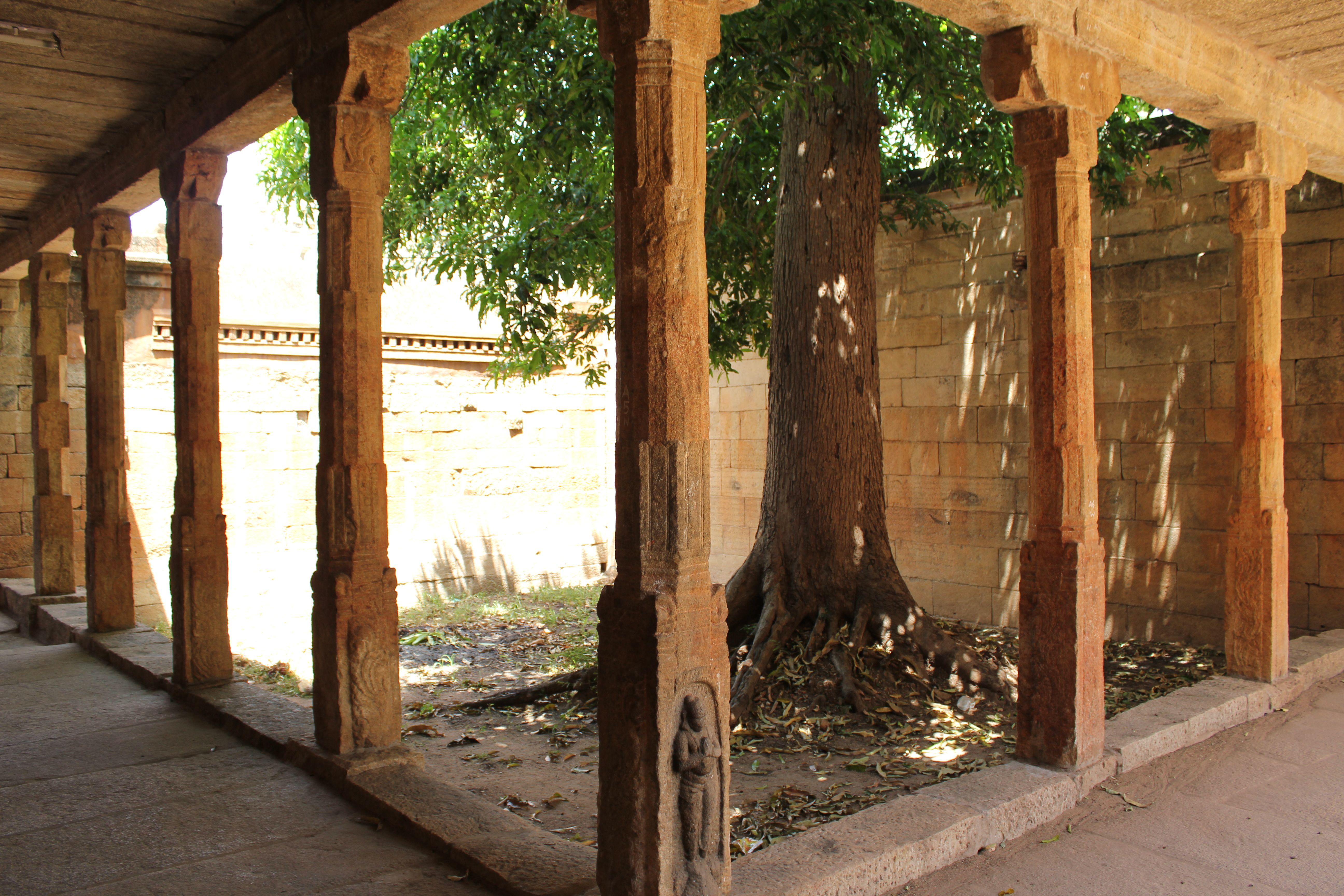 D'life home interiors kochi kerala pin by kamalan travels on deep into the southern lands  pinterest