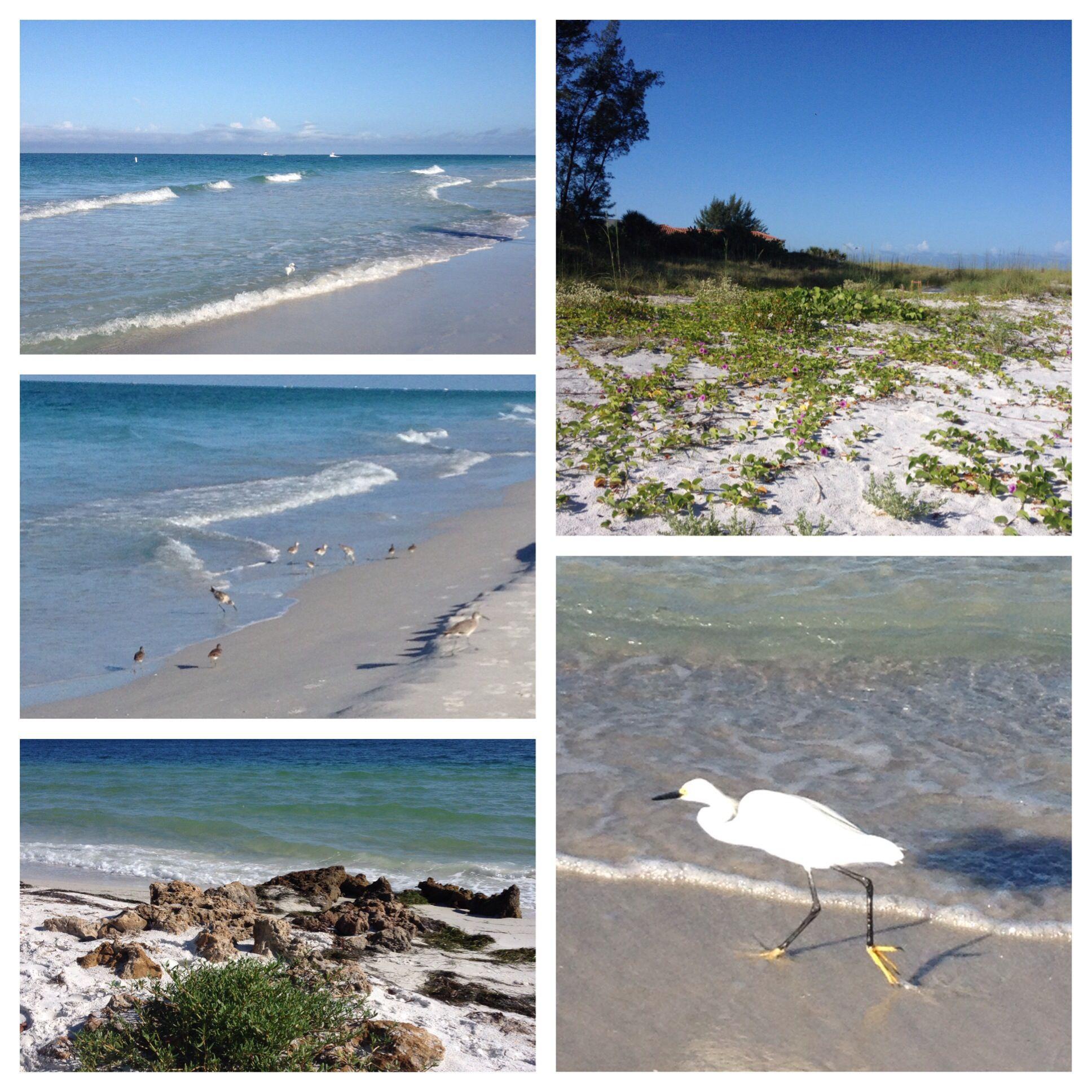 Anna Maria Island Beach: Anna Maria Island, Florida