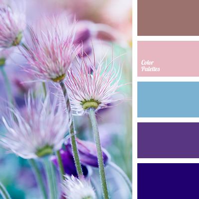 Color Palette 3989 images