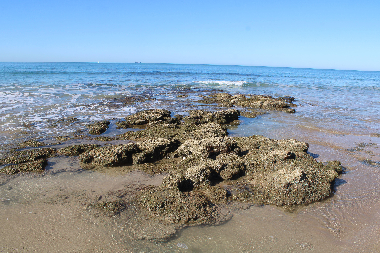 orilla de la playa de santa catalina en El Puerto de Santa María