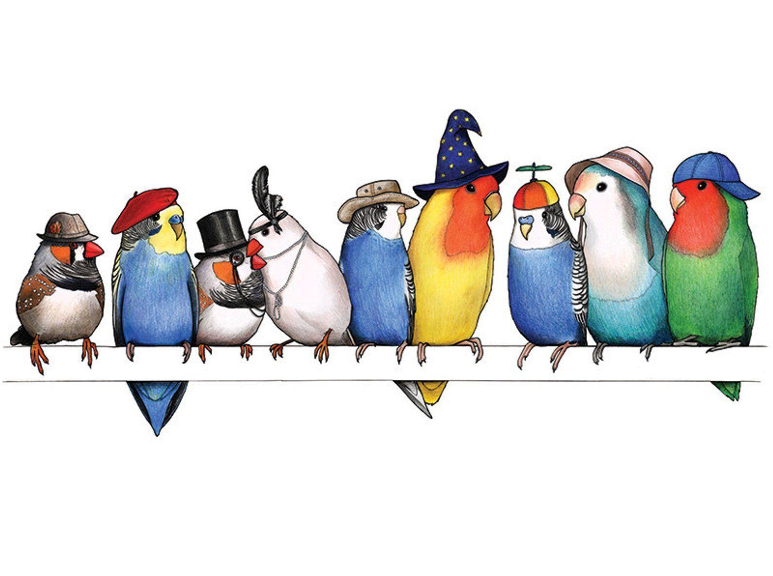 A Row Of Little Birds In Hats A3 Art Print Etsy Bird Art Print Bird Art Bird Drawings
