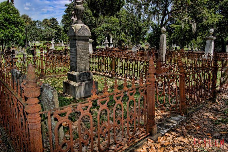 Magnolia Cemetery. Charleston, SC