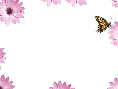 Printable Flowers and Butterflies Borders | Butterfly Border Clip ...