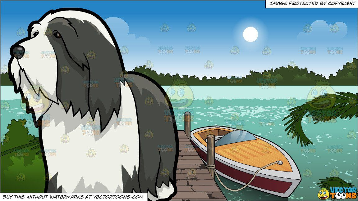 A Wondering Bearded Collie Dog and A Boat Tied Up To A