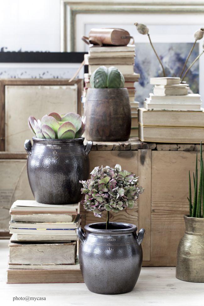 Cazuelas como macetero #Ideas para #decorar con #plantas #home_plants