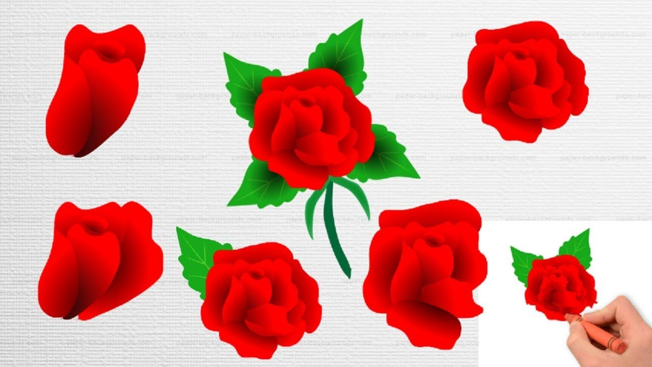 Flowers Color Pages|| Red Rose||Coloring Flower for kids| | Drawing ...