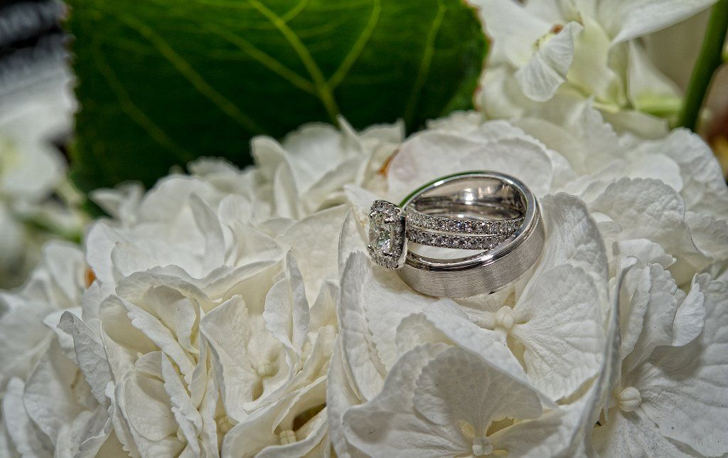 PMD Photography - Wedding photo of our rings