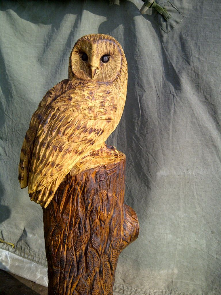 Barn owl carved with chainsaw in norfolk wood carving