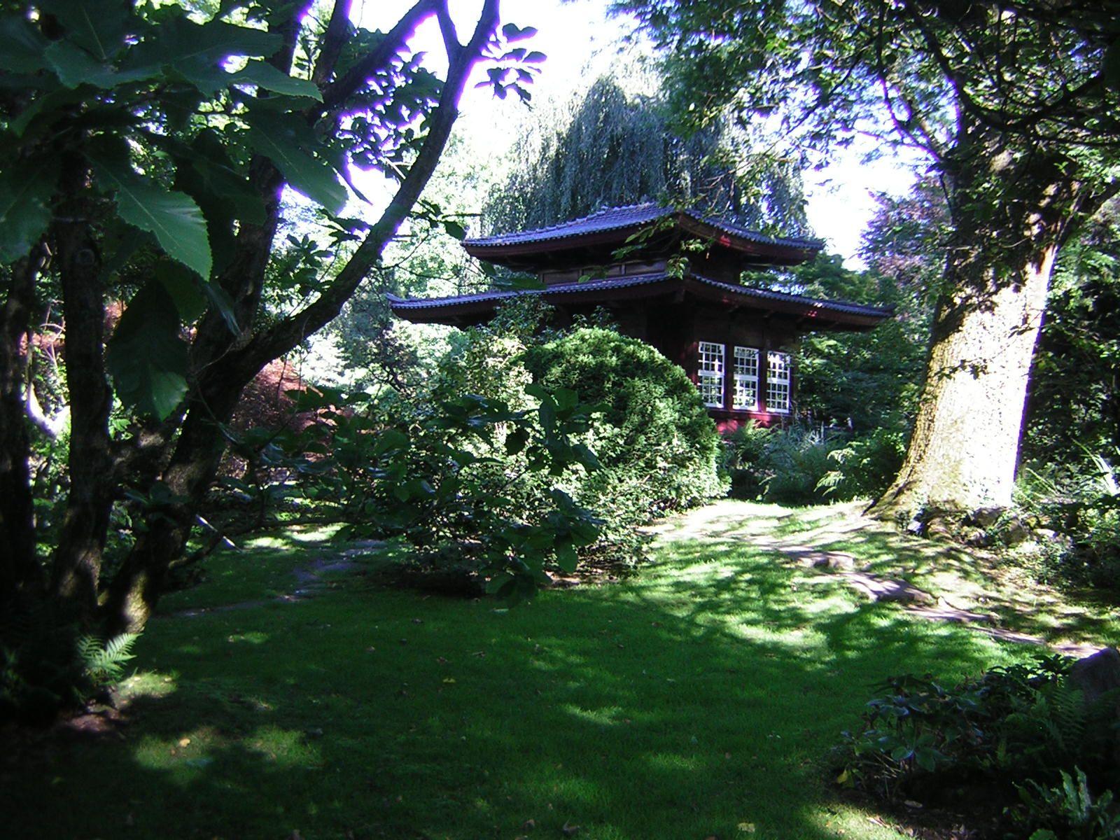 Auf Motivsuche im Japanischen Garten